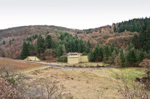 B 812 Rosengarten