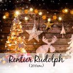 Rentier Rudolph (200 cm)